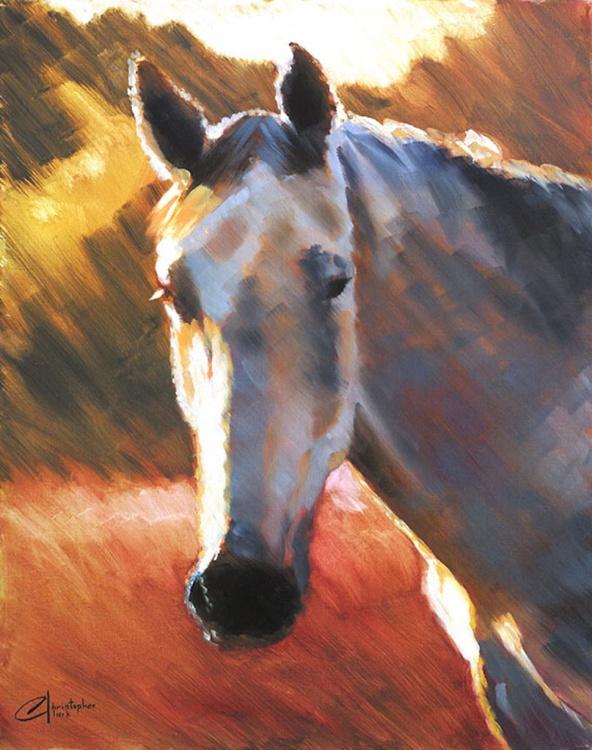 Grey Horse at Sunset II - Image 0