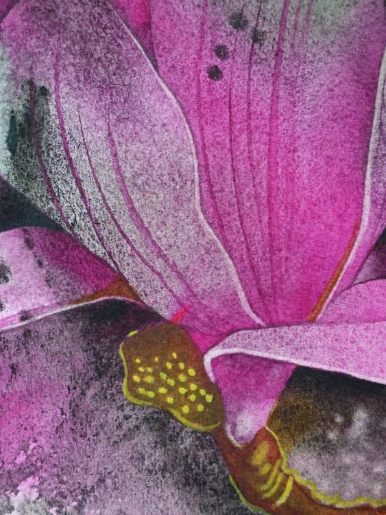 Pink Magnolia - Image 0