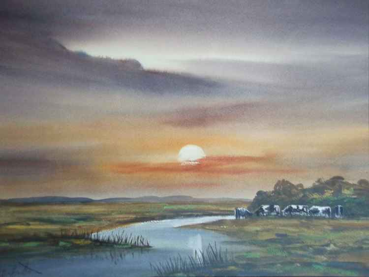 Cattle On the Marshes, Norfolk