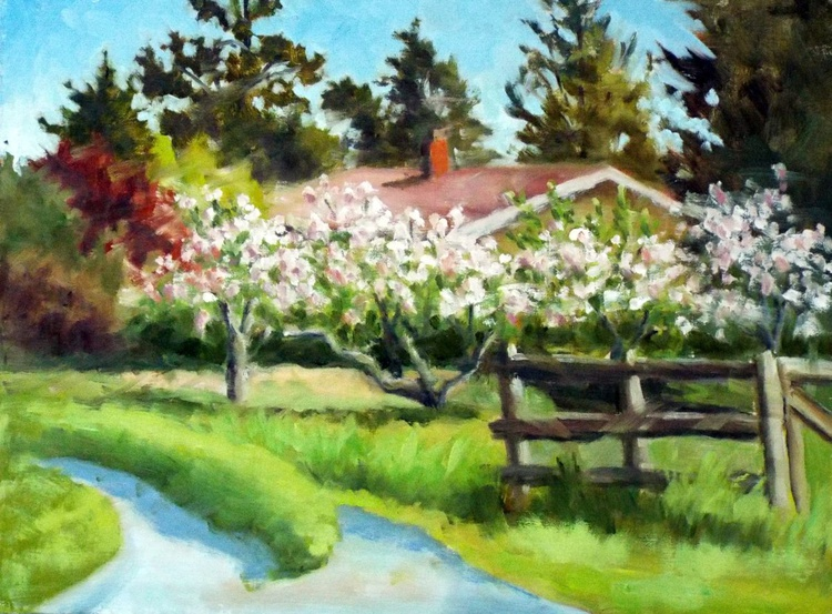 Spring Apple Blossoms - Image 0