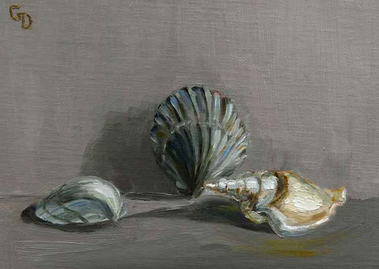 Seashells no. 1 -