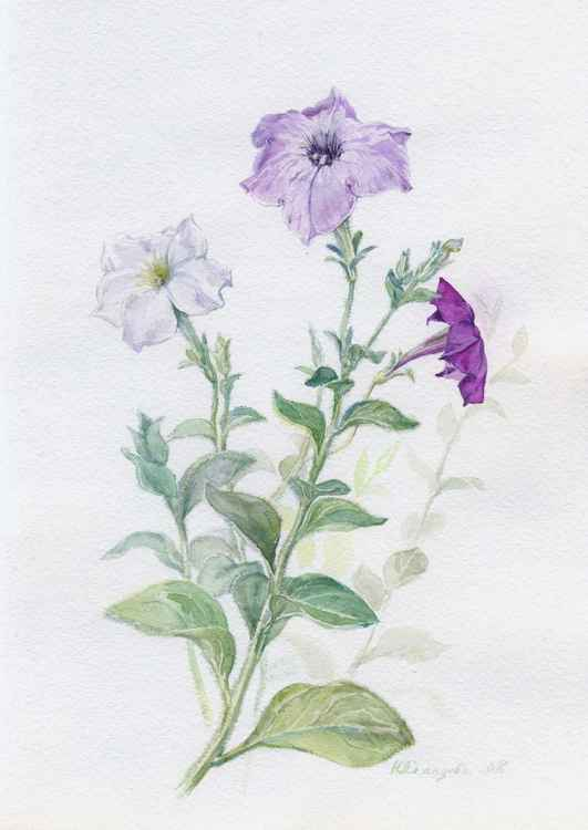 "Original watercolor ""Petunia 3"" -"