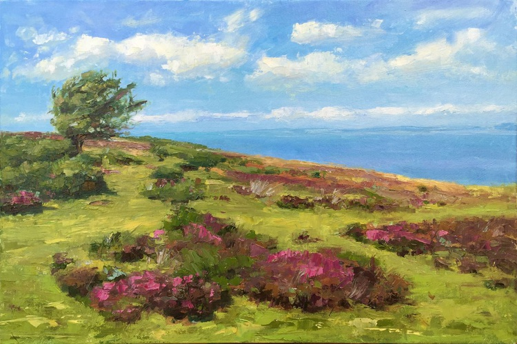 Sunny day on Exmoor - Image 0