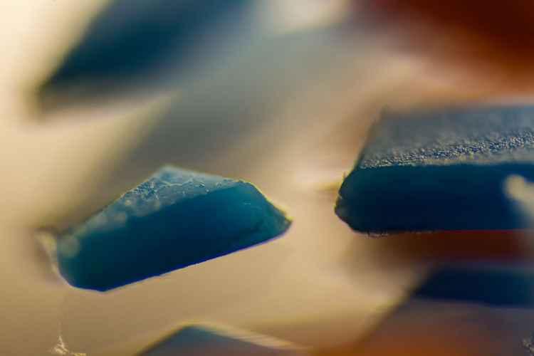 Plastic. Landscape 6