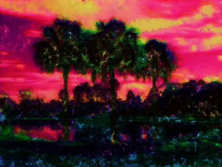 Florida Dreaming -