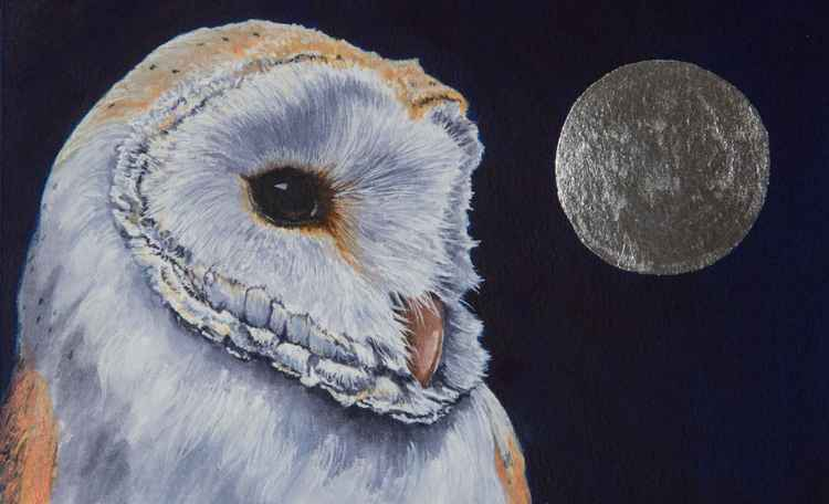 The Moon Bird -