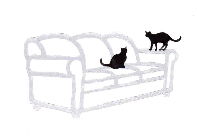 Two cats on a couch 2115B