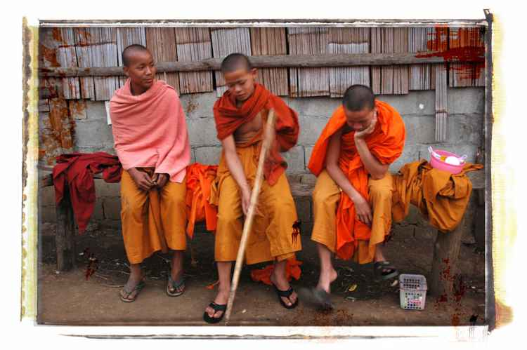 Young Monks -