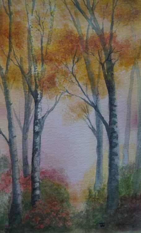 Autumn Birch -