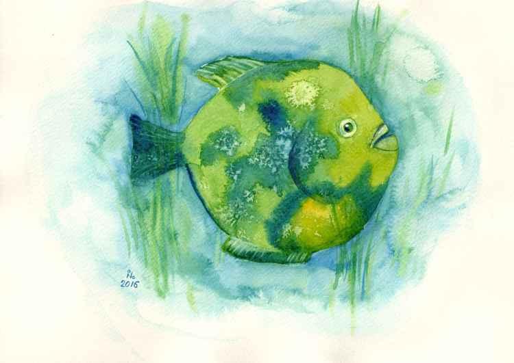 Green fish -