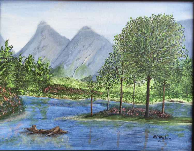Shallow Lake -