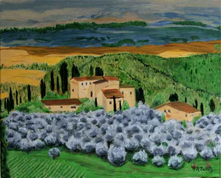 Tuscan Olive Grove -