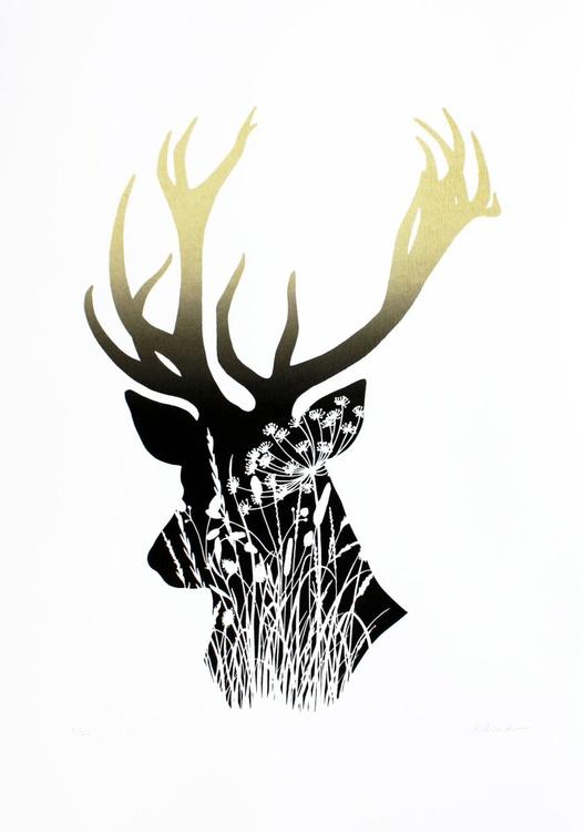 Wildwood - Image 0