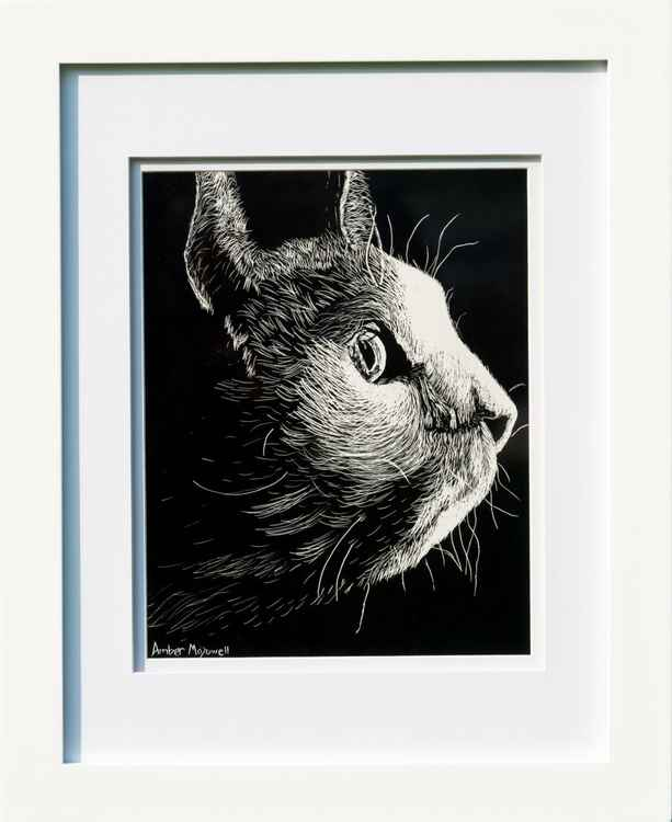 Cat Etching -