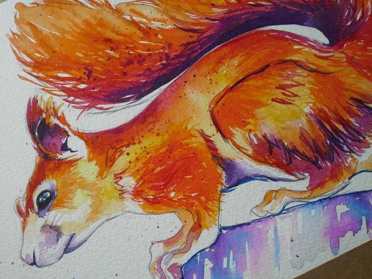 Red Squirrel - Image 0