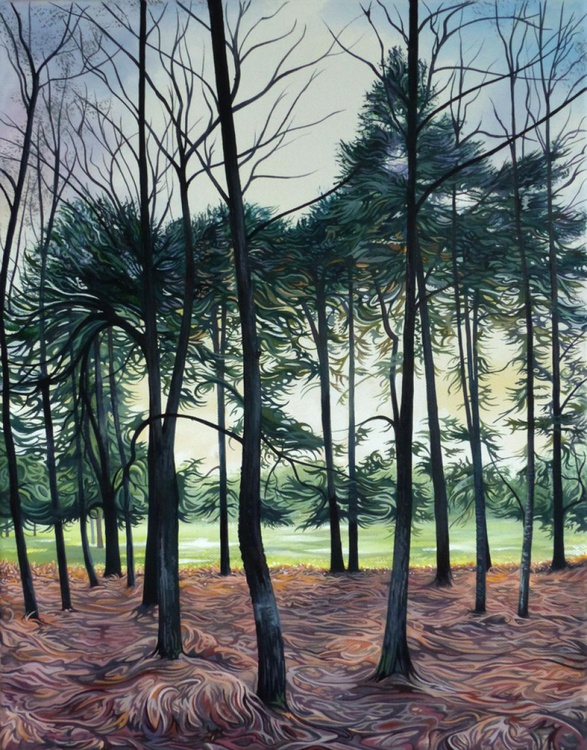 Sunset through the Pines - Image 0