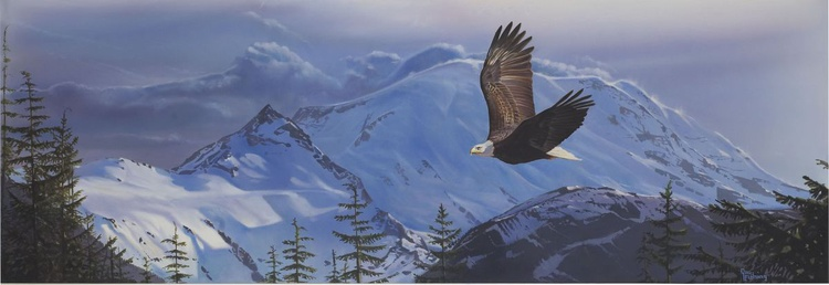 where eagles dare - Image 0