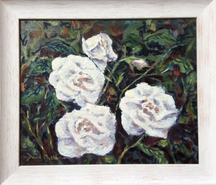 White roses - Image 0