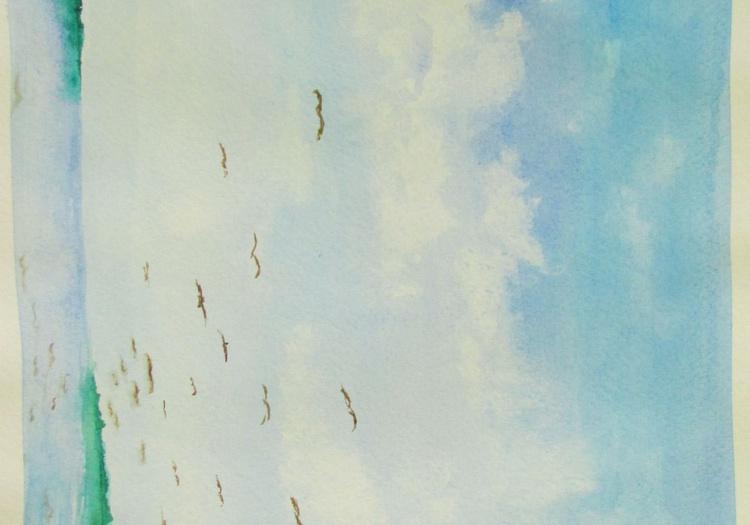 Sky - Image 0