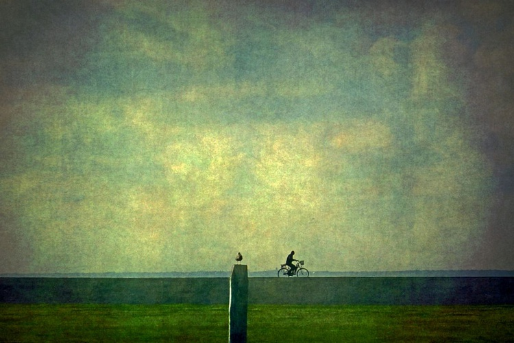 Against the Wind - Canvas 75 x 50 cm - Image 0