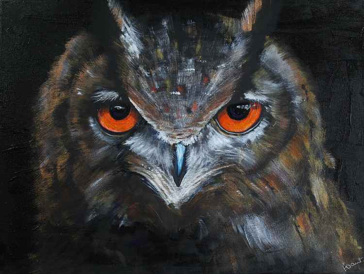 The Golden Feather, Eagle Owl, canvas -