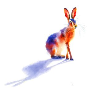 Sunlit Hare by Denise Laurent