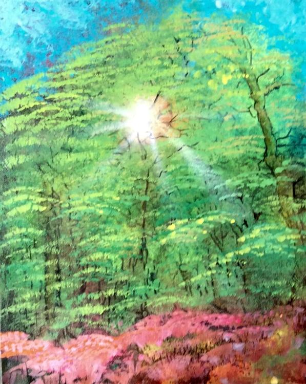 Sun thru the forest. - Image 0