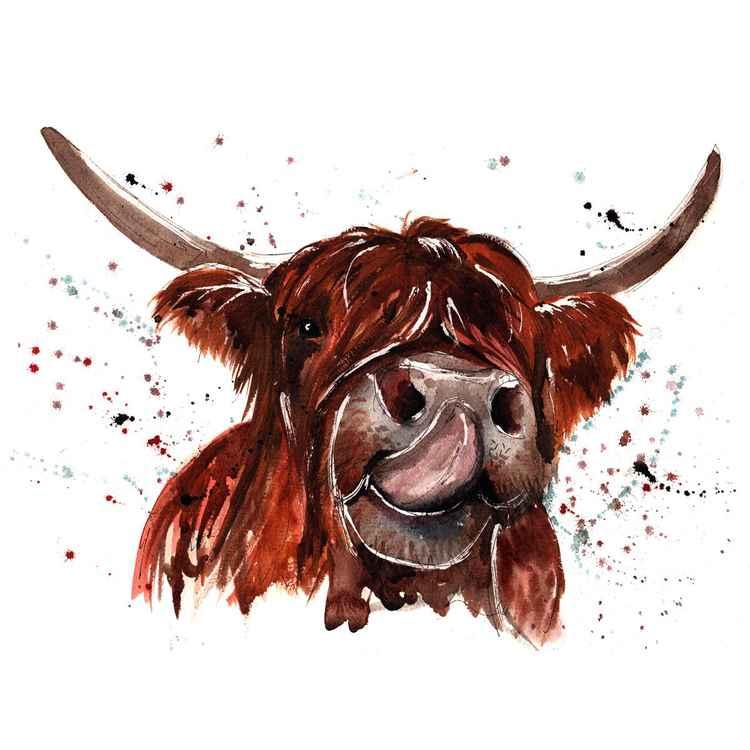 Highland Cow - Gertie -