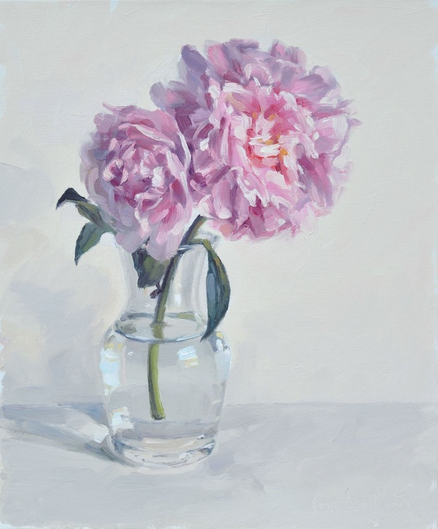 Peonies,  white background - Image 0