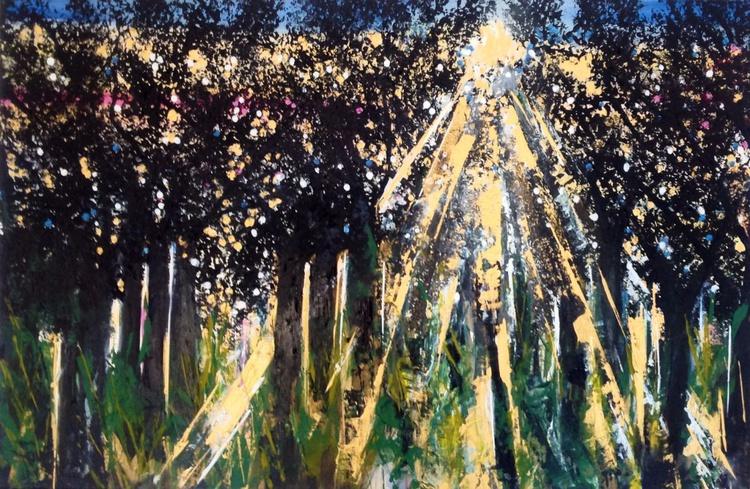 Forest Light - Image 0