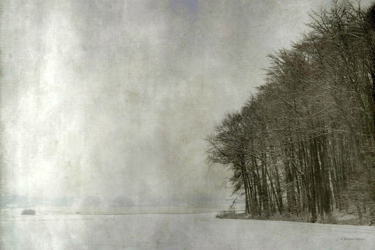 Silence of Winter - Image 0