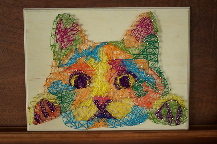 Kitty String - Image 0