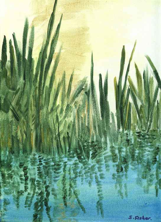 the reed bed early morning. -