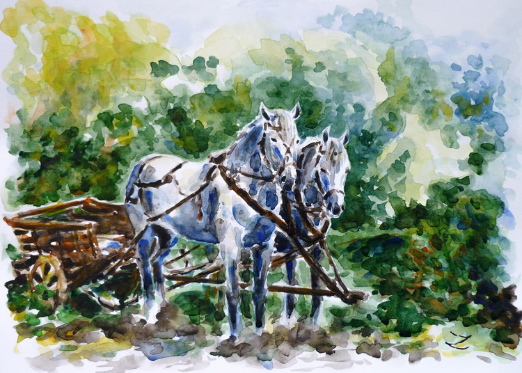 Harnessed Horses - Image 0