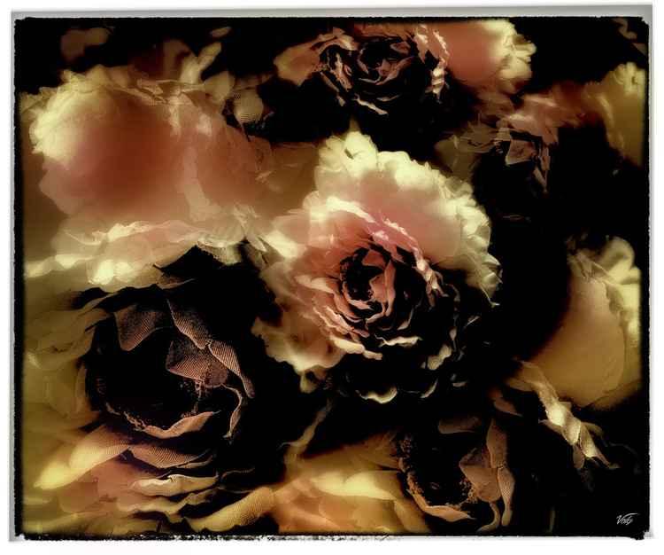 """"""" Fleurs désaturées """""""
