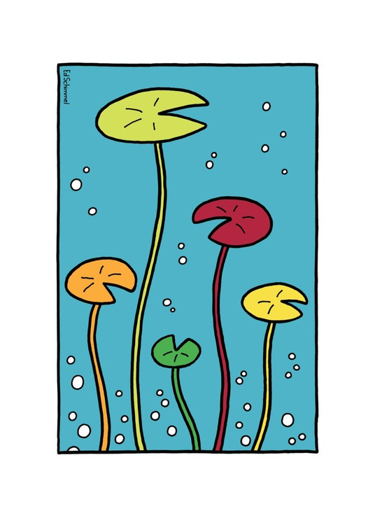 Water lilies - Limited edition of 50 - 50x70 - Image 0