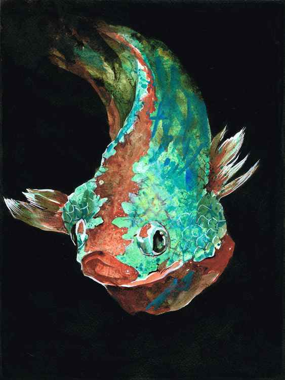 Green red dragon fish