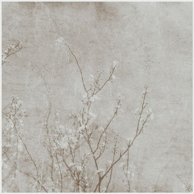 Cherry blossom selenium - Image 0
