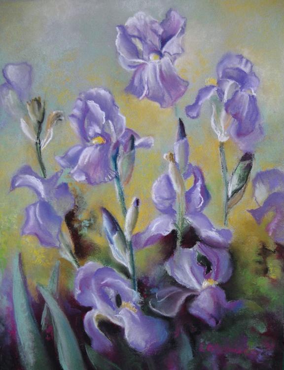 Maria's irises - Image 0