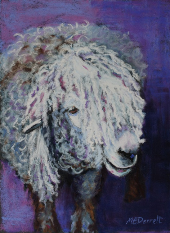 Dreadlocks Sheep 2 - Image 0