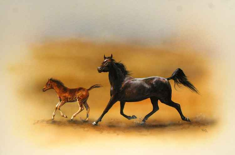 Arab Mare and her Foal -