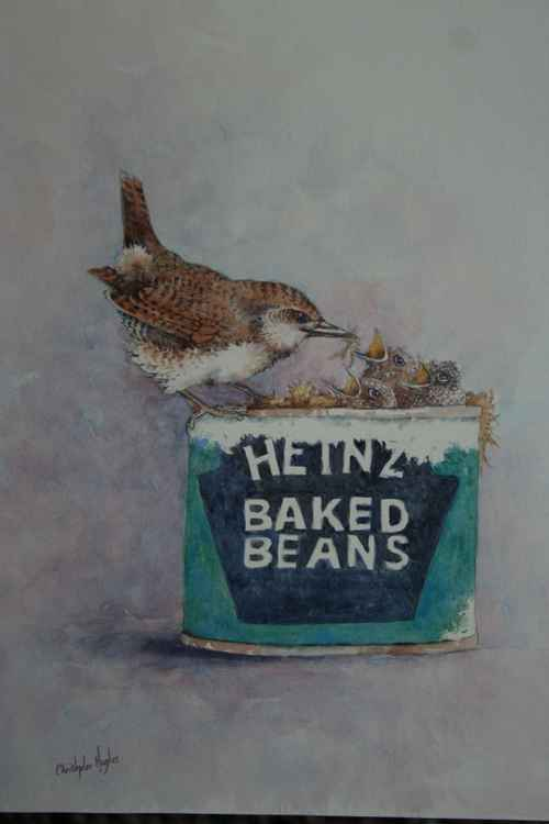 Wrens and Beanz