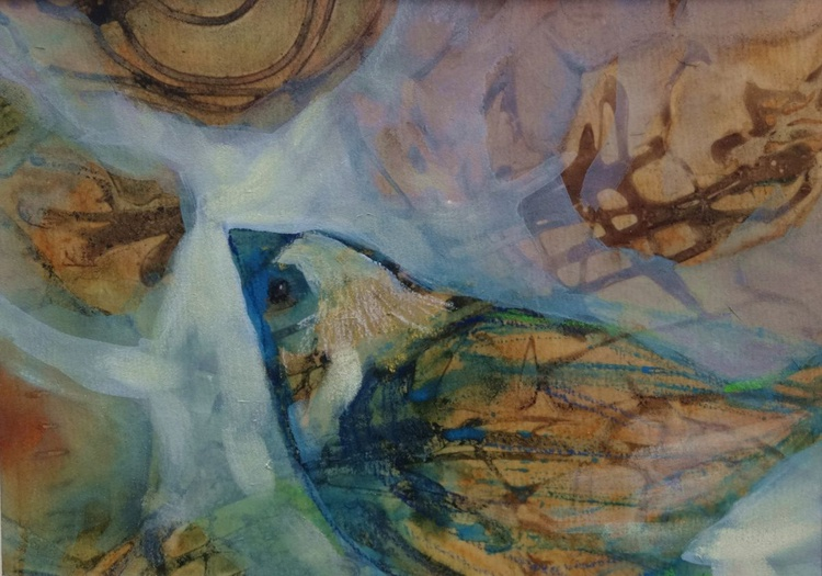 Brown Sparrow - Image 0