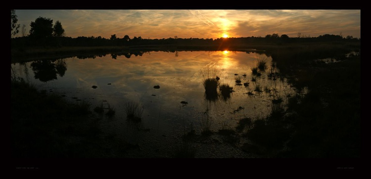 Sunset over the pond - Image 0