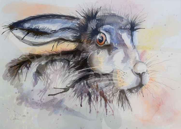 'Scary Hare' -