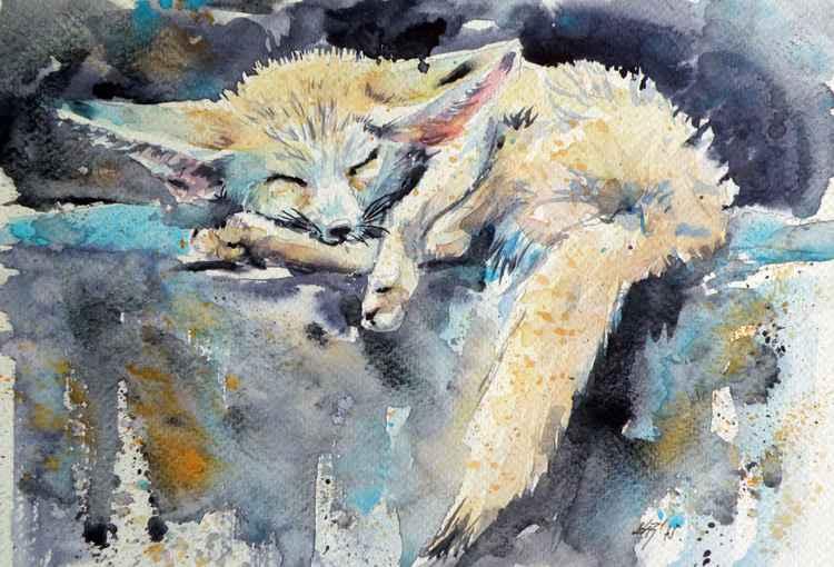 Desert fox sleeping