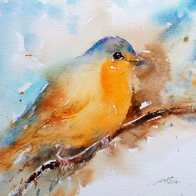 Robin Perched - Image 0