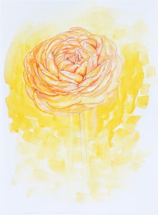 Like Sunshine - Image 0