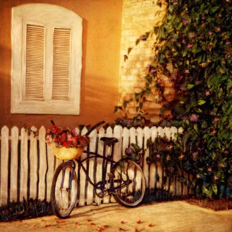 Jamaican Bike -