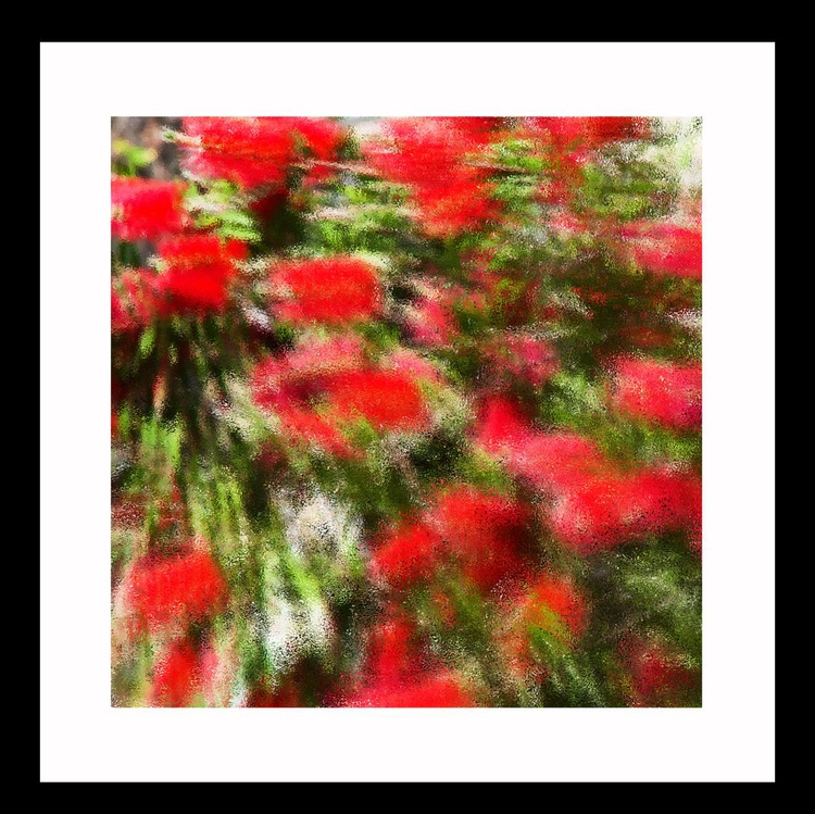 Natural Abstracts - Flower number 6 - Image 0